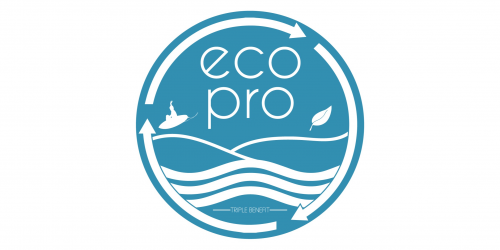 Future 6 Pro logo